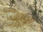 Roche jaune dans le Grand Canyon